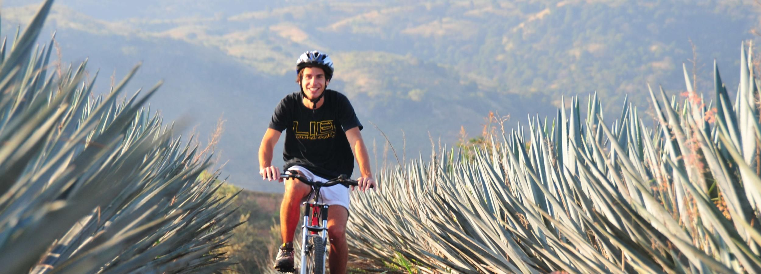 Tequila: Town and Agave Fields Guided Bike Tour
