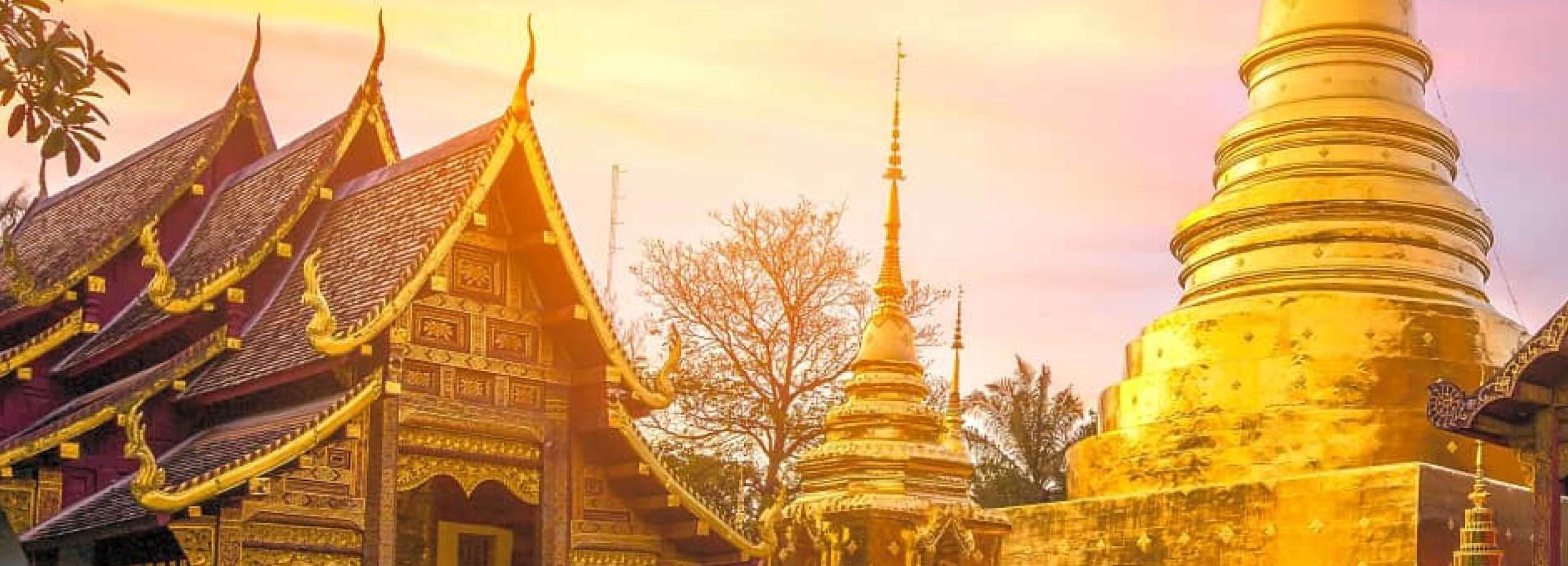 Chiang Mai: tour nocturno de 4h en Wat Umong y Doi Suthep