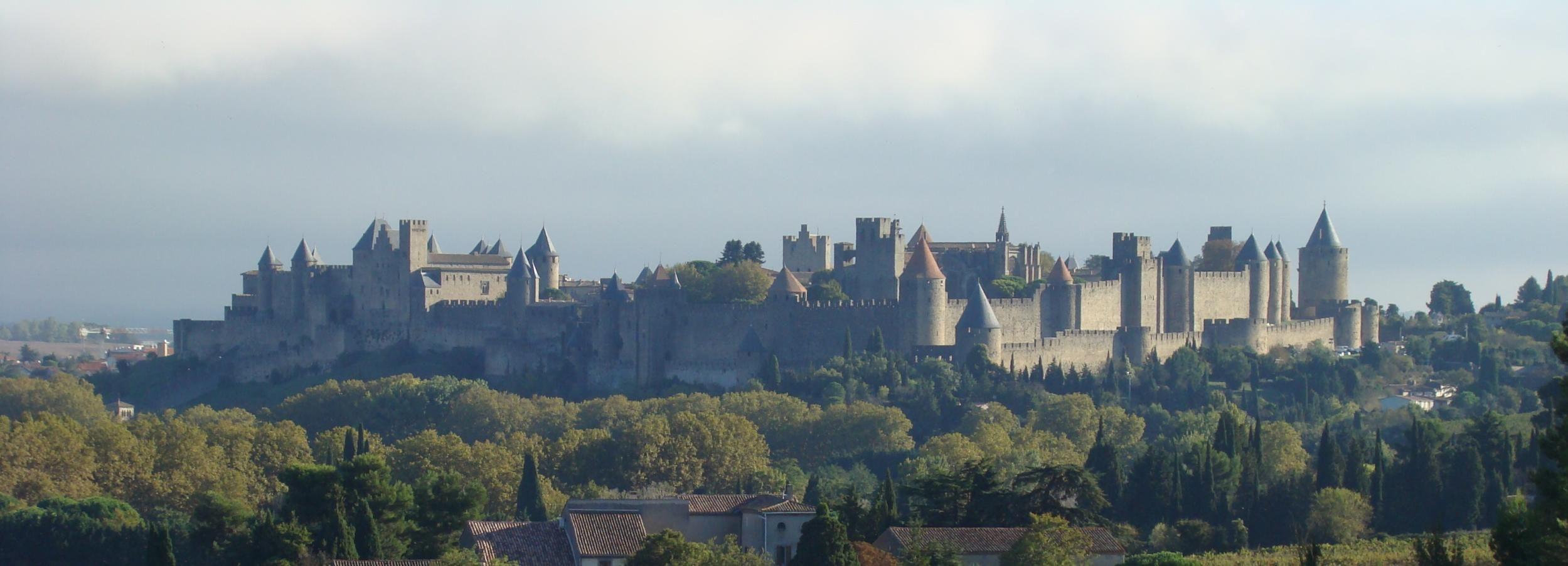 Depuis Toulouse: visite privée à Carcassonne et à Albi