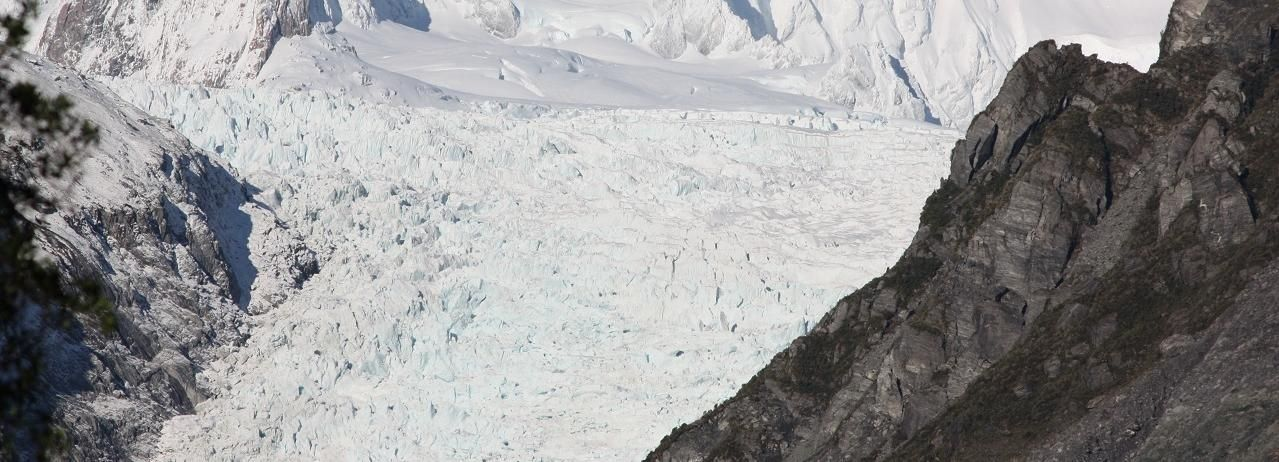 Fox Glacier: Half Day Walking & Nature Tour with Local Guide