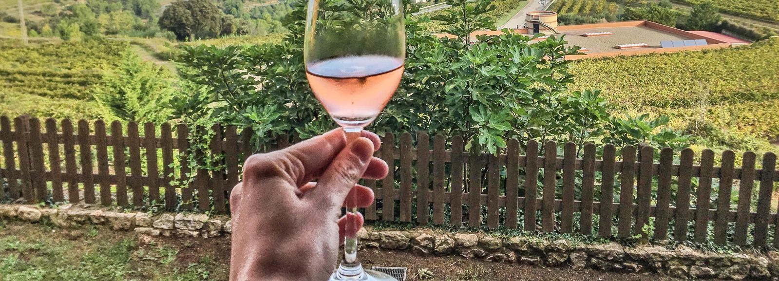 Barcelone: excursion d'une journée à Montserrat avec déjeuner et vin