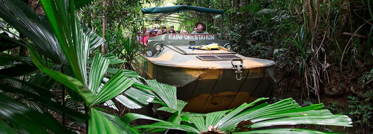 Nature Park Kuranda Rainforestation