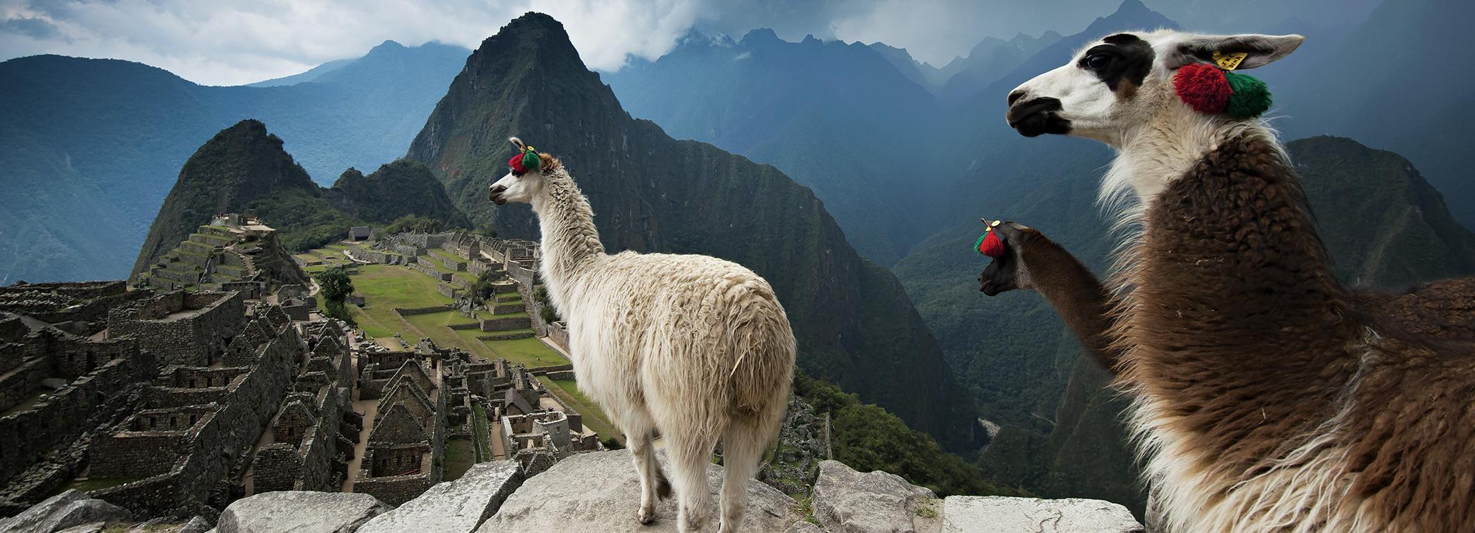 From Cusco: Machu Picchu Full-day Private Tour