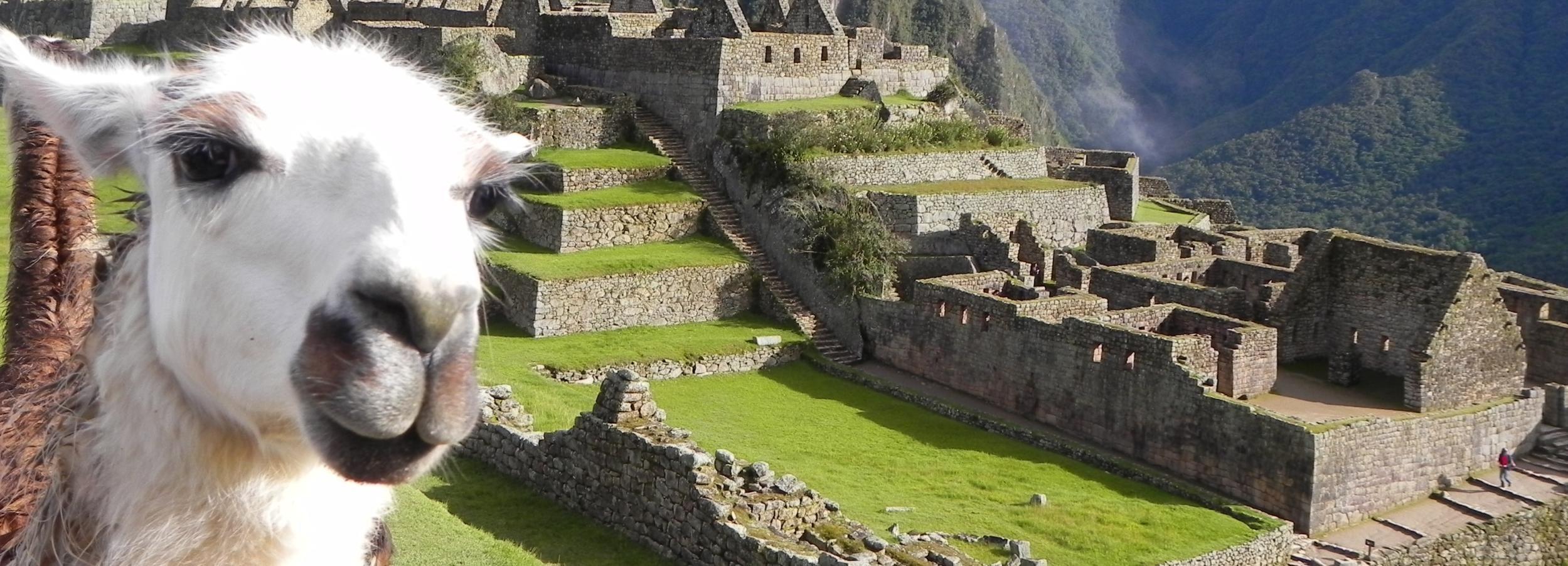 Cusco: 2-Day Machu Picchu by Tourist Train