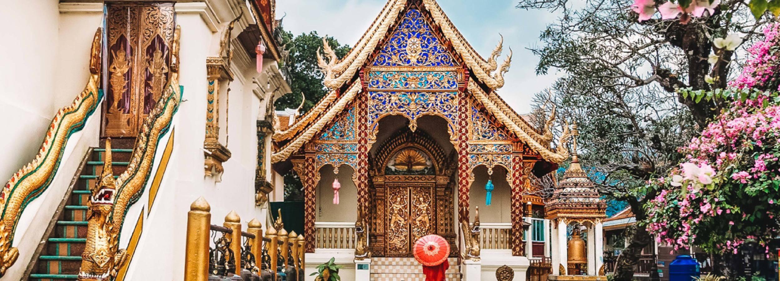 Recorrido en grupos pequeños por Doi Suthep, Wat Umong y Wat Pha Lat Sunrise