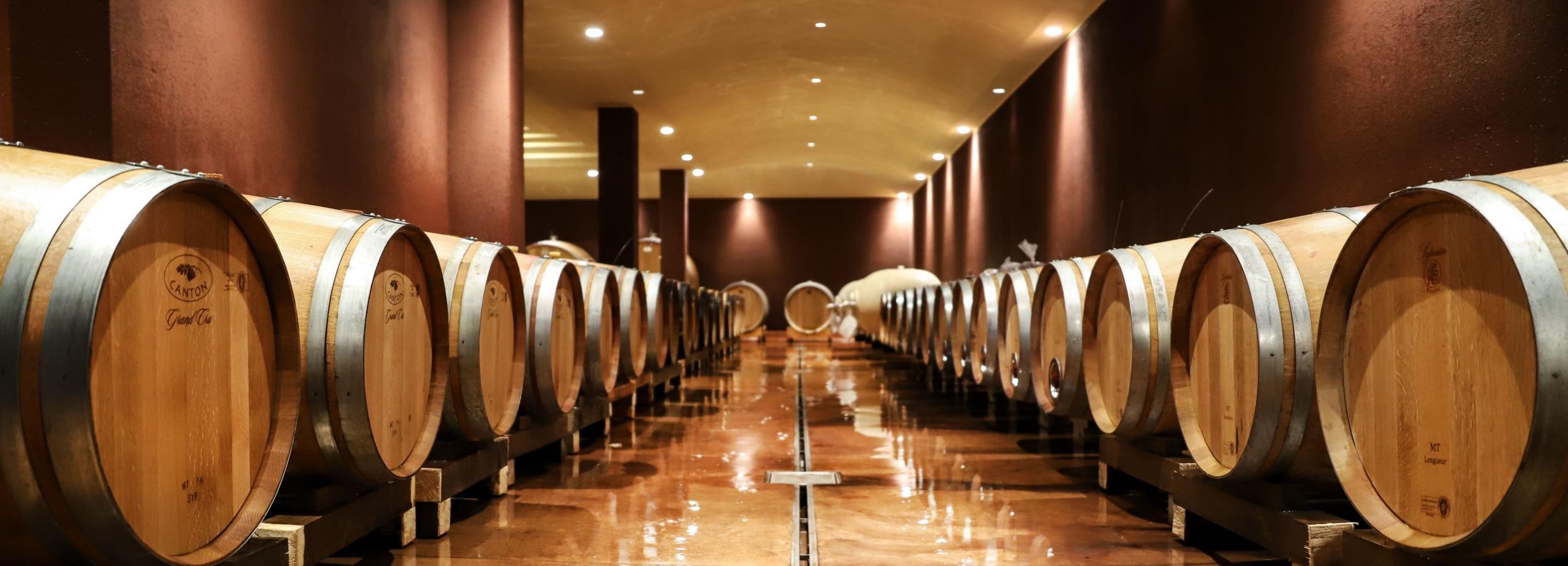 Lago di Garda: tour del vino e degustazione a Bardolino