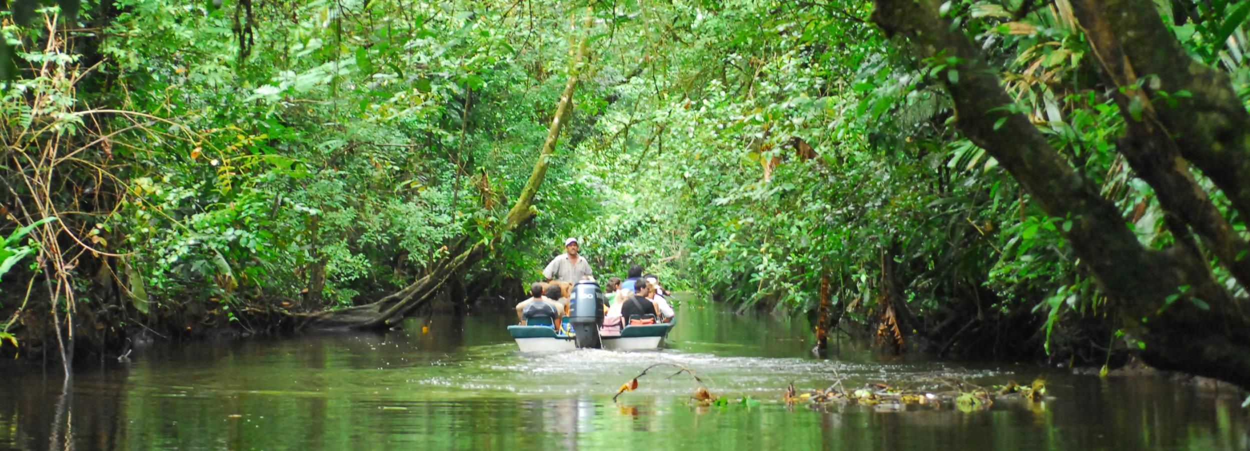 San Jose: Tortuguero Park Day Tour with Breakfast & Lunch