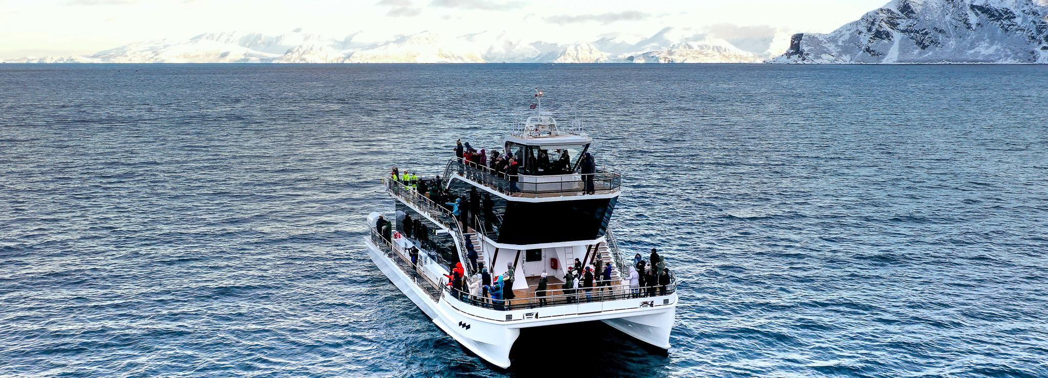 Tromsø: boottocht elektrische catamaran fjord & wilde dieren