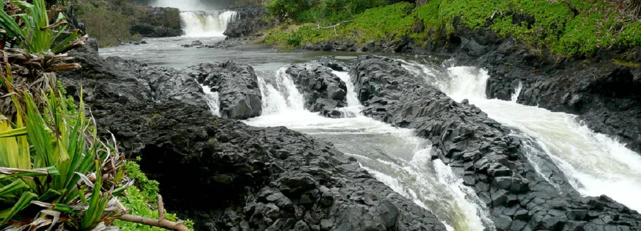 Maui: Full Day Hiking Tour with Lunch