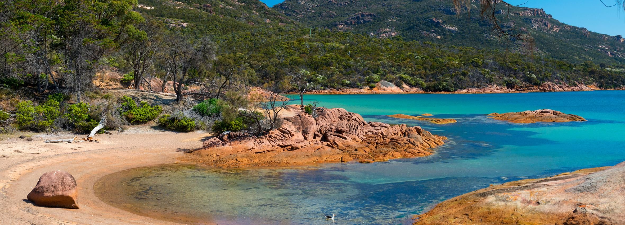 From Hobart: Wineglass Bay and Freycinet Private Tour