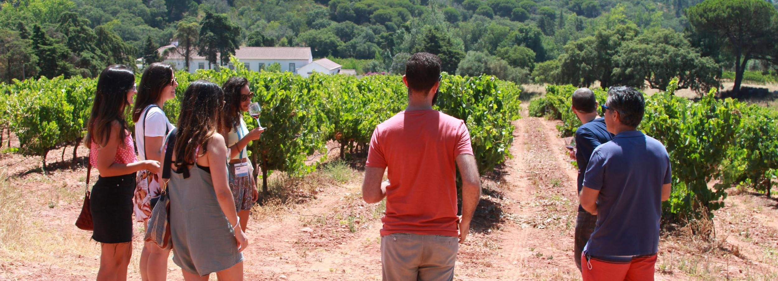 Excursão a Arrábida e Sesimbra com Degustação de Vinhos