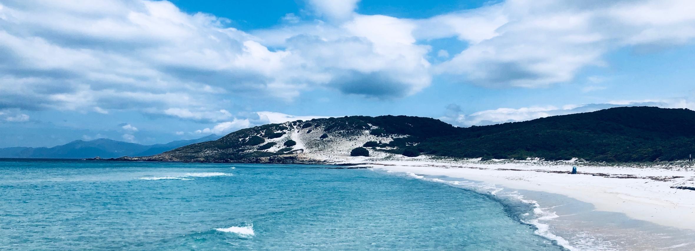From Calvi: 4x4 Day Tour Mountain & Agriates' Saleccia Beach
