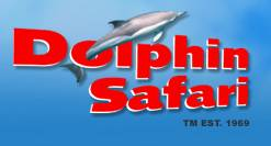 Dolphin Safari Gibraltar