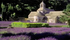 Provence Explorer