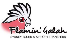 Flamin' Galah Sydney Tours