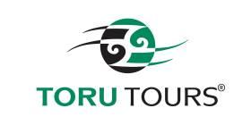 Toru Tours