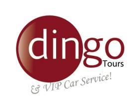 Dingo Tours