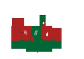 Cadiz Food Tours