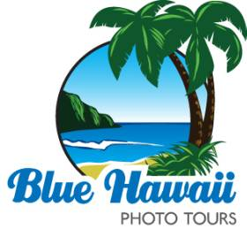 Blue Hawaii Private & Photo Tours