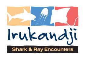 Irukandji Shark & Ray Encounters