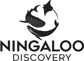 Ningaloo Discovery