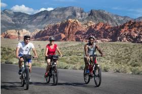 RedEbike Electric Bike Tours