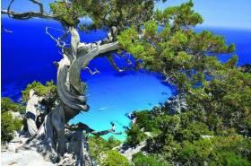 Sardinia Natural Park Tours