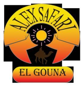 Alex Safari