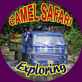 camel safari exploring
