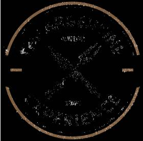 The Argentine Experience