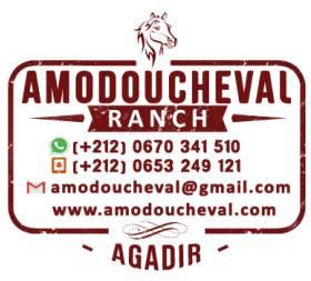 Amodoucheval Agadir