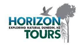 Horizon Tours