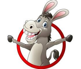 Donkey Tours Mykonos
