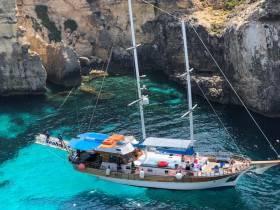 Seahorse Cruises Malta