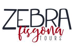 Zebra Fisgona Tours