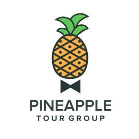 Pineapple Tour Group LLC