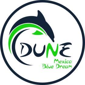 Mexico Blue Dream