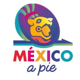 Mexico a Pie Walking Tours