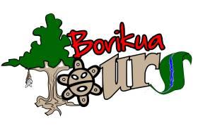 Borikua Tours