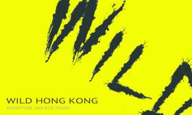 Wild HK