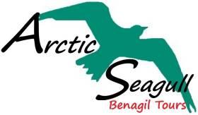 Arctic Seagull Benagil Trips