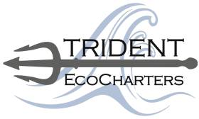 Trident EcoCharters