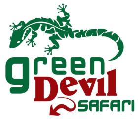 Green Devil Safari - open 4x4 tours