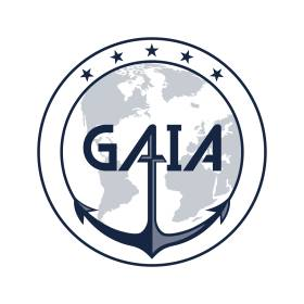 The GAIA Experience