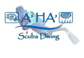 A' HA' Scuba Diving Cancun