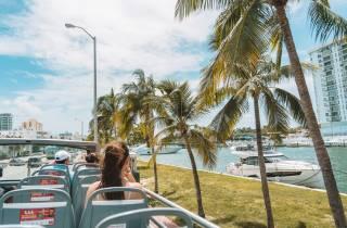 Miami: Bustour & optionale Bootsfahrt & Everglades-Show