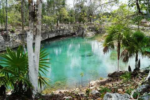 Riviera Maya: visite de Tulum, de Coba et d'un cénote