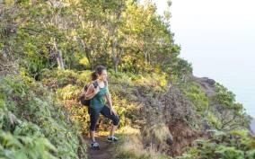 Kauai: Waimea Canyon & Kokeʻe State Park Private Tour
