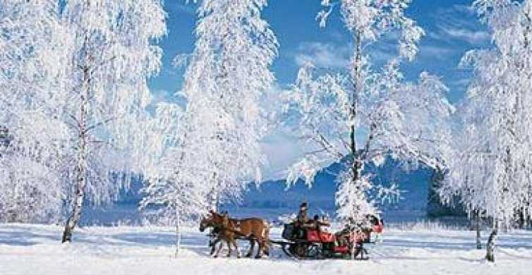 From Salzburg: 8-Hour Tour with Horse-Drawn Sleigh Ride