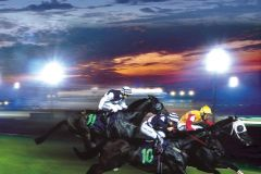 Corrida: Cingapura Turf Club Horse Racing